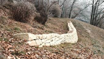 Aufwertungsmassnahme: Unterhalb des Hexenplatzes sind in den letzten Jahren bereits Trockensteinmauern realisiert worden.