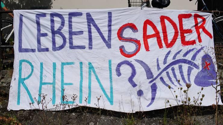 Am Mittwochnachmittag fand eine Aktion in Basel statt. Es sollte auf das Fischsterben aufmerksam gemacht werden.