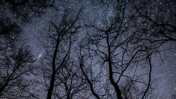 Nachthimmel-2019