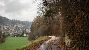Das Ankenland mit dem Ankenlandweg bei Bottenwil.