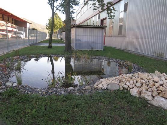 Der naturnahe Aussenbereich der Firma PWF Laupersdorf.