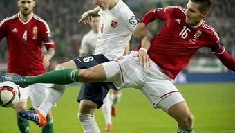 Ungarn gewann das Duell gegen Norwegen und nimmt erstmals seit 1972 wieder an einer EM teil