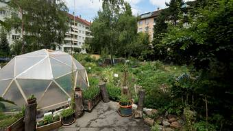 Urban Agriculture: Selbstversorgung in beiden Basel