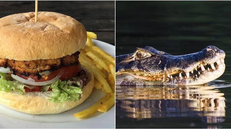 ... Im Strandbad Seerose in Meisterschwanden gibt es neu Krokodilburger.