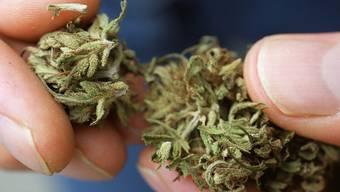 Cannabis: Der Konsum bleibt verboten, der Besitz ist allerdings straflos.