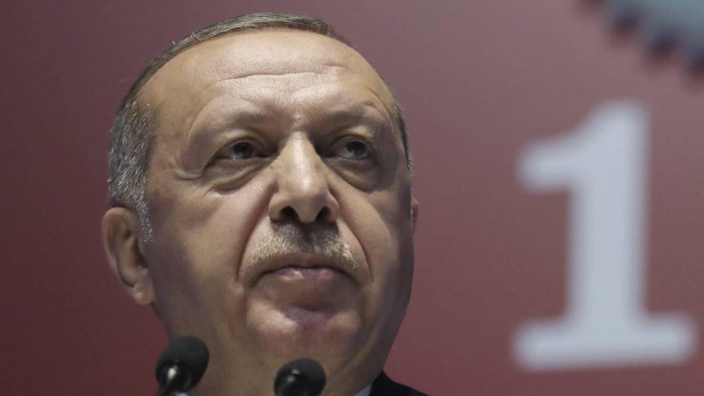 Keine Lösung bei Syrien-Gesprächen von Erdogan, Putin und Ruhani