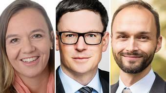 Drei Kandidatinnen und Kandidaten für das Amt des Gerichtspräsidenten.
