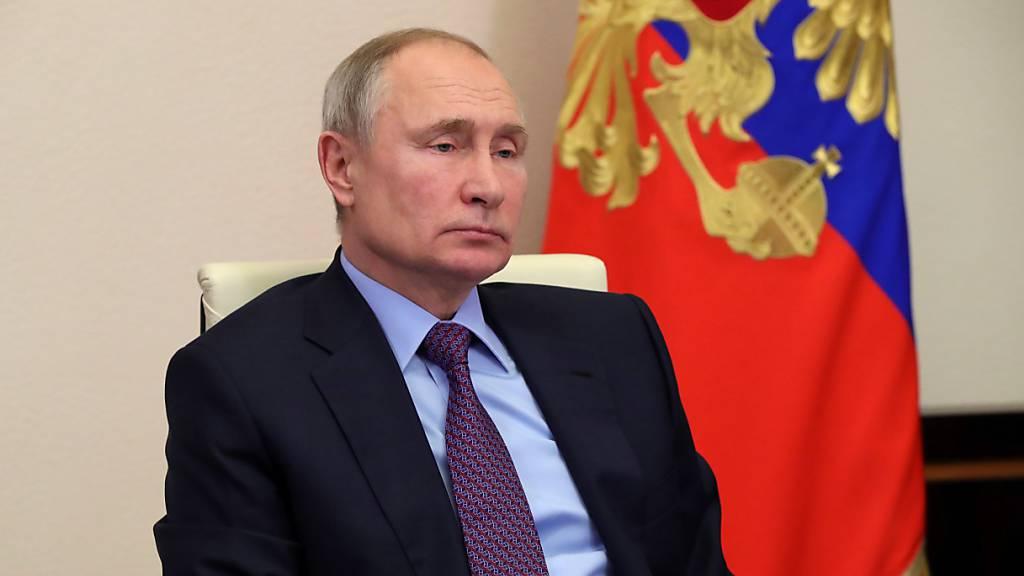 Palast für Putin? – Nawalny hält den Kremlchef für luxussüchtig