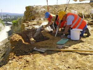 Durch eine Sprengung in Widlegg wurden erhebliche Mammutreste gefunden.