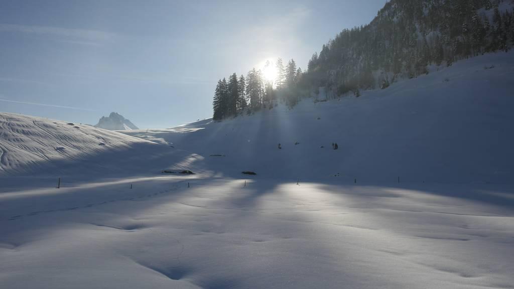Minus 24 Grad: Toggenburger Alp knackt Temperaturrekord