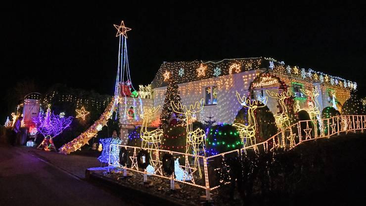 Die Weihnachtsbeleuchtung von Richard Biedermann in Gunzgen: Rund 40'000 LED-Lichter zieren seinen Garten.