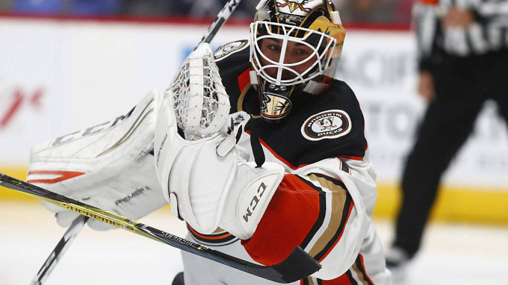AHL statt NHL: Der Zürcher Goalie Reto Berra wurde in Nordamerika degradiert