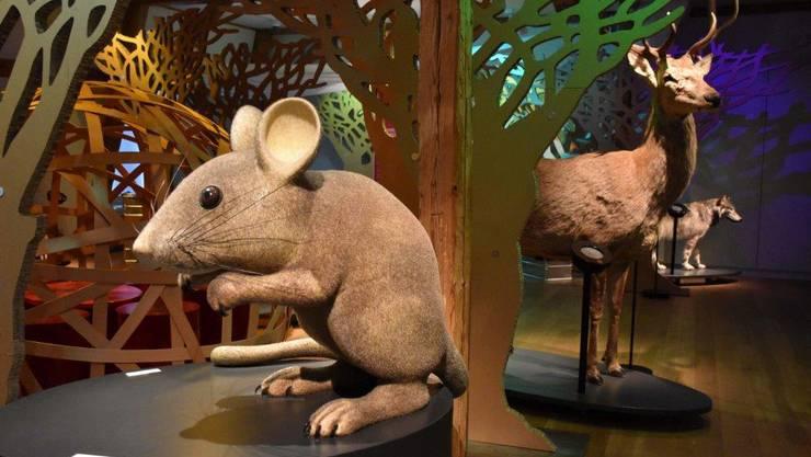 Wie Maus, Hirsch und Wolf in Märchen dargestellt werden.
