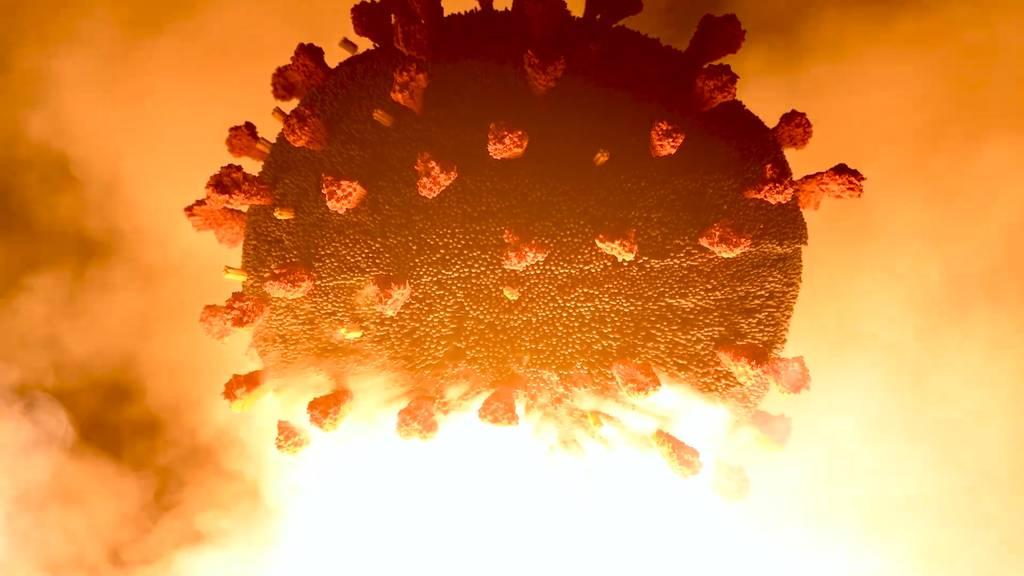Knall zu Silvester: 100'000 Zündhölzer und ein gesprengter Virus