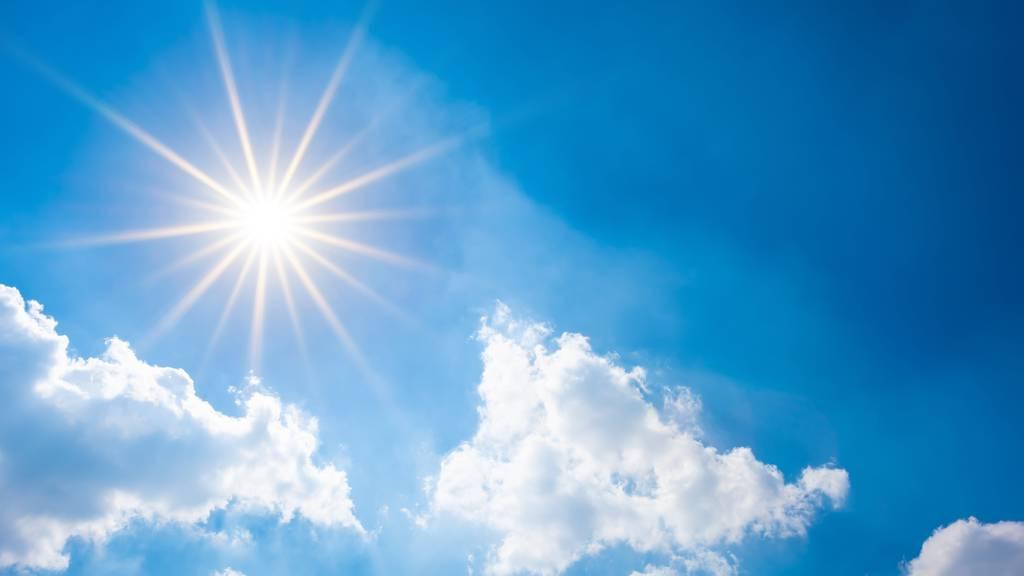 Sommerliche Temperaturen: Bis zu 26 Grad im Rheintal