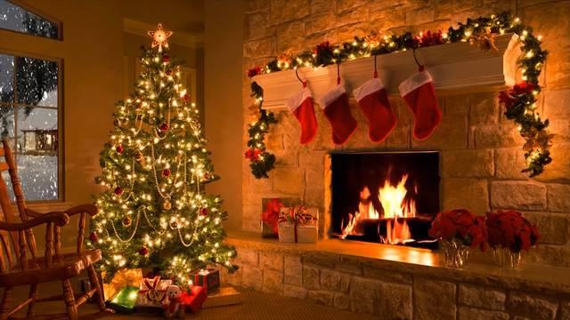 Die schönsten Weihnachtsbäume der Region