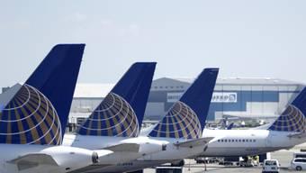 Trotz Strafzöllen: Die US-Fluggesellschaft United Airlines kauft beim europäischen Hersteller Airbus 50 Langstreckenmaschinen des Typs A321XLR. (Symbolbild)