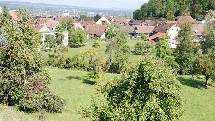 Das Gebiet Hofacher in Kaisten soll überbaut werden, die Gemeinde möchte eine Liegenschaft erwerben und mit altersgerechten Wohnungen ausstatten. sh/Archiv