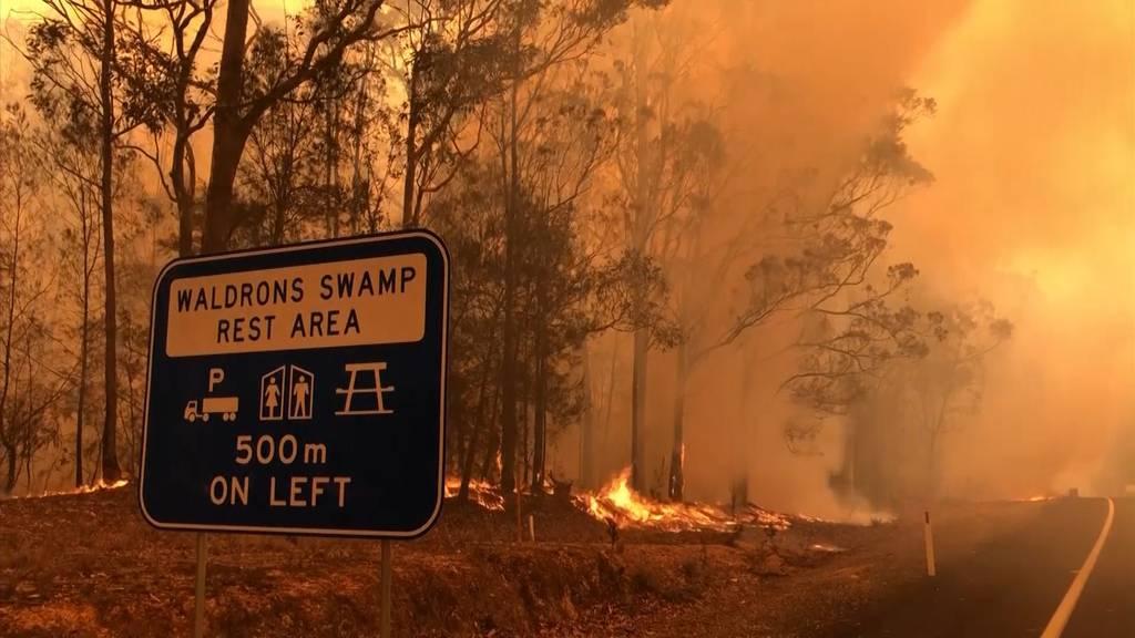 Australien: Tausende Reservisten zur Brandbekämpfung angefordert