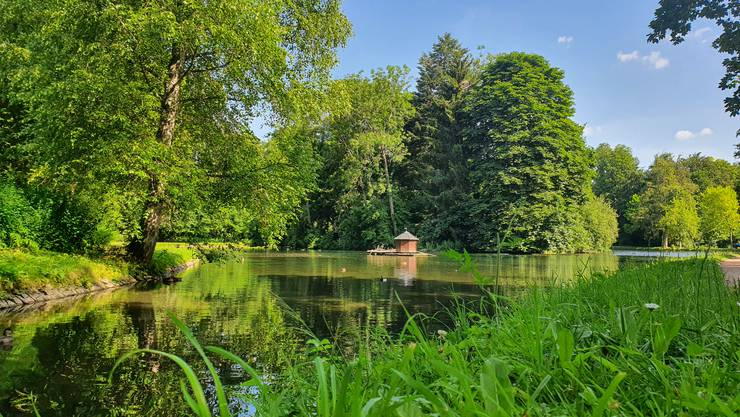 Park in Donaueschingen.