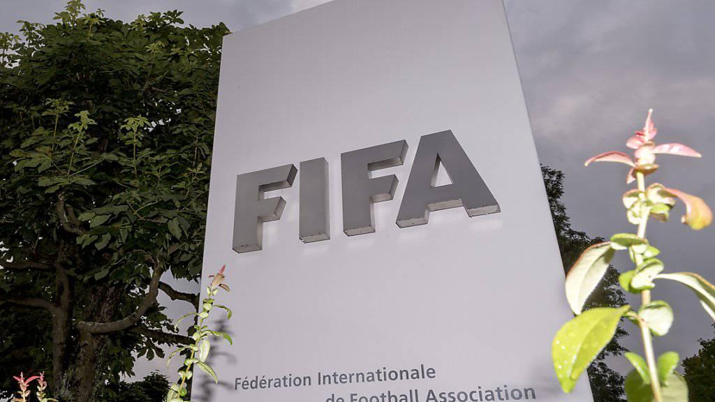 Die FIFA hat wirtschaftlich ein turbulentes Jahr hinter sich