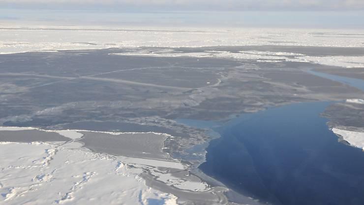 Im März erreicht die Meereisdecke der Arktis ihre maximale Ausdehnung - doch noch nie war diese so klein wie dieses Jahr. (Archiv)