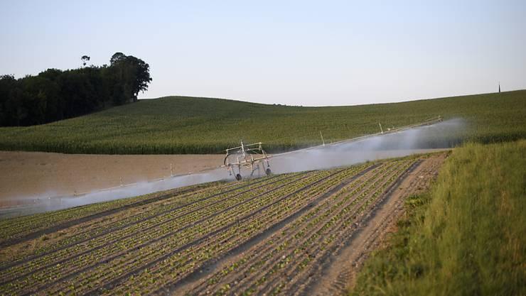 Bestehende Gesetze in der Landwirtschaft reichen der Jungen SVP aus.