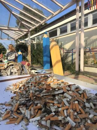 Berge von gesammelten Zigarettenstummeln
