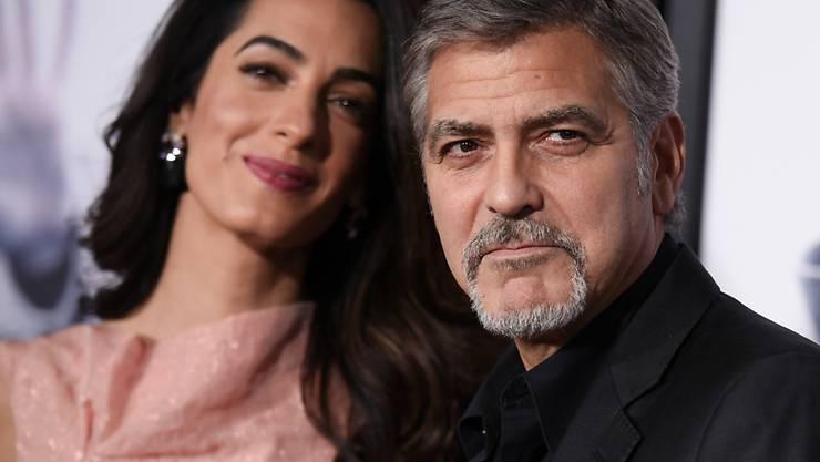 """Amal und George Clooney haben sich die Hündin """"Millie"""" (nicht im Bild) aus dem Tierheim geholt. (Archivbild)"""