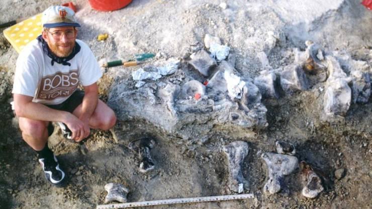 """Der Saurierfuss wurde 1998 ausgegraben. Nun ist klar: """"Bigfoot"""" ist ein naher Verwandter der Brachiosaurier. (Archivbild)"""