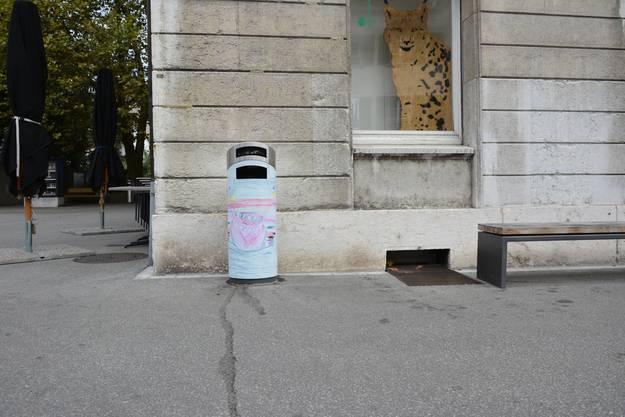 Für die Aktion «Kunst am Kübel» wurden zehn öffentliche Abfallkübel verschönert.