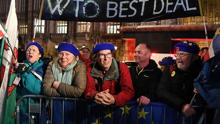 Vor dem Parlament demonstrierten Befürworter des Brexits sowie Anhänger eines EU-Verbleibs Grossbritanniens. EPA/ANDY RAIN