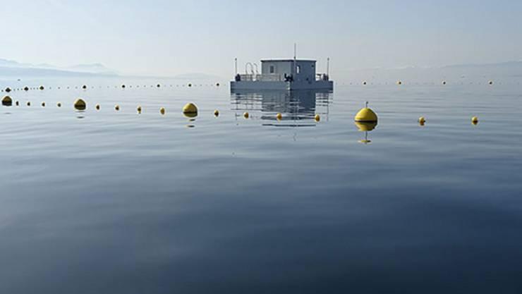 """Von Bojen vor dem Schiffsverkehr geschützt schwimmt die Forschungsstation """"Léxplore"""" auf dem Genfersee."""