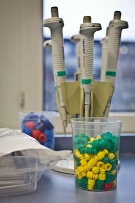 Utensilien in den neu eingerichteten Laboratorien
