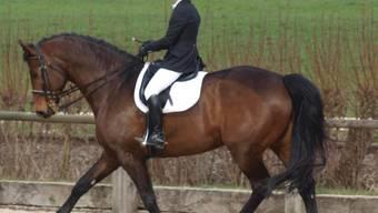 Liliane Etter aus Urdorf reitet mit ihrem Pferd Lancino II in der Prüfung L11 auf den vierten Platz. zvg