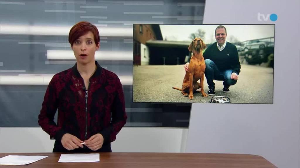 Hundebrause: Vierbeiner schlabbern Wasser mit Geschmack