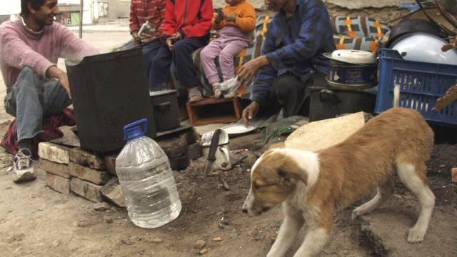 Traurige Lebensbedingungen: Roma in Bulgarien (Archiv)