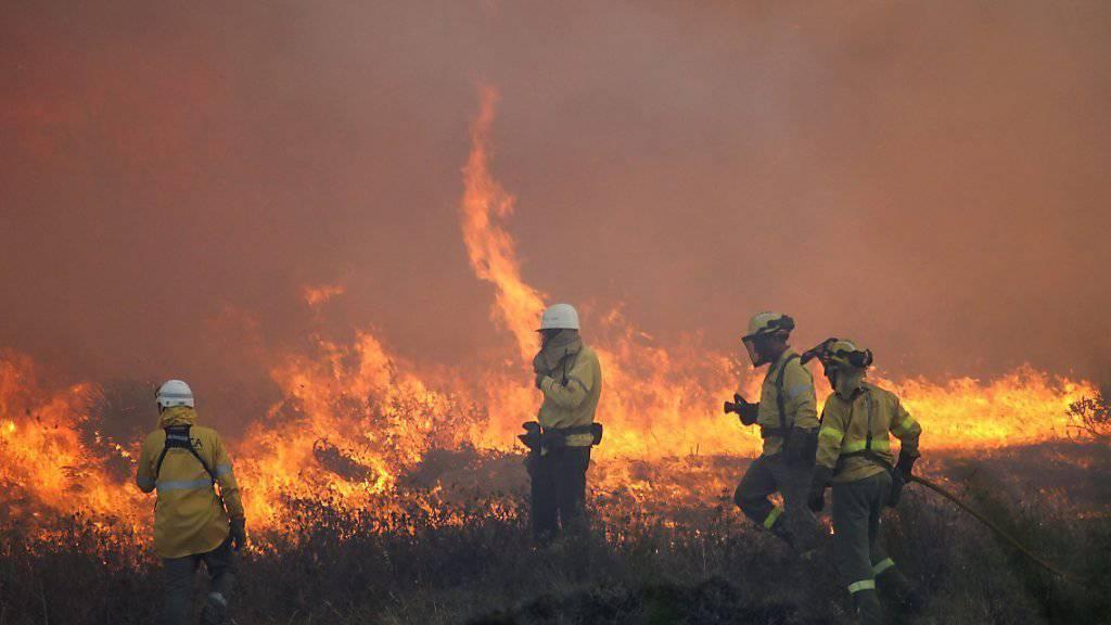 Grosse Hitze und Trockenheit führten zu Buschbränden an der spanischen Costa del Sol: Vor allem deutsche Touristen mussten ein Hotel in der Nähe verlassen.