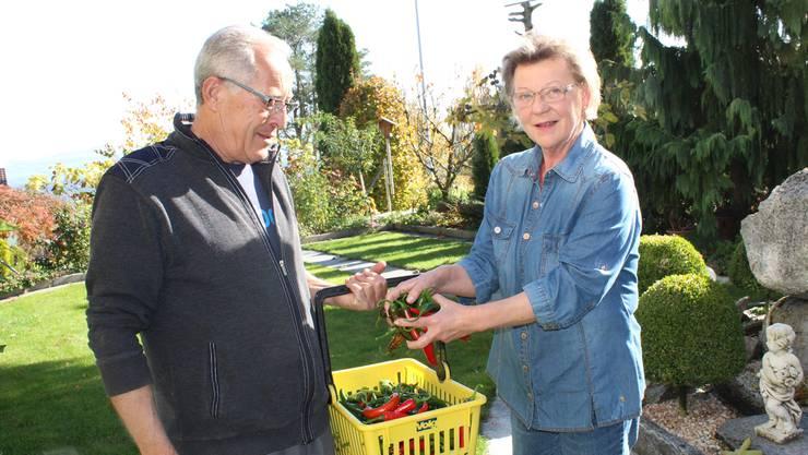 Prisca und Rosario Bresci ernten viele Zutaten für ihre kroatisch-italienischen Kreationen im eigenen Garten.