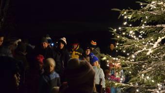 Waldweihnacht in Bergdietikon