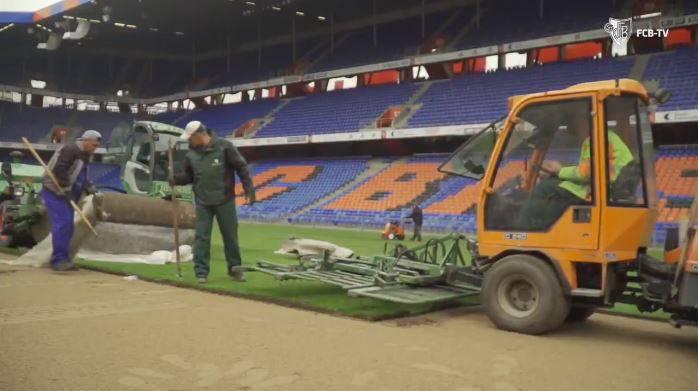 Hier wird der neue Joggeli-Rasen verlegt.