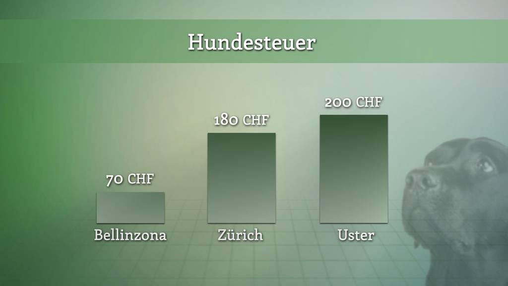 Hundesteuer – grosse regionale Unterschiede in der Schweiz.