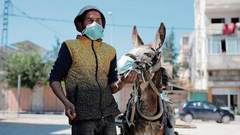 Schlecht vorbereitet: der Gazastreifen.