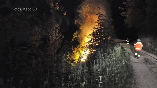 Waldbrand im Kanton Solothurn