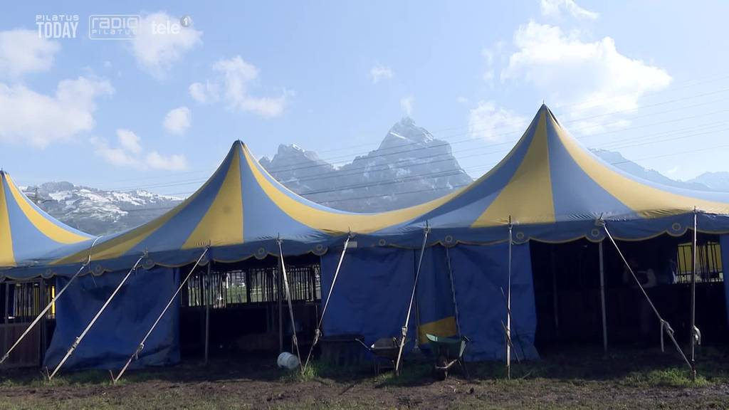 Gestrandeter Zirkus in Ingenbohl trainiert so gut es geht weiter