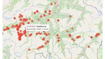 Die neue Karte in Graubünden mit den Grossraubtier-Beobachtungen.