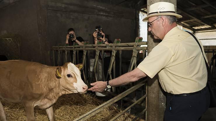 Bundesrat Guy Parmelin besucht einen Bauernhof und macht Bekanntschaft mit einem Kalb.