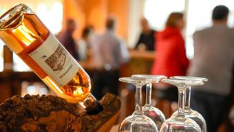 Weindegustation Weiningen