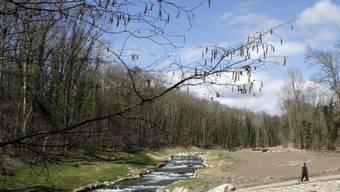 Ein Fluss bei Genf wurde wieder renaturiert (Symbolbild)