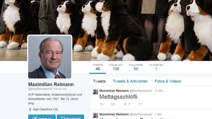 Fake-Account von Maximilian Reimann